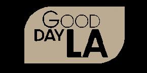 Good Day LA Defense Attorney RJ Manuelian